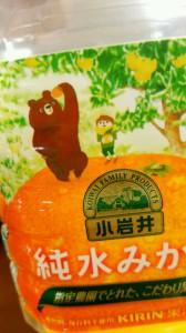 小岩井オレンジくま